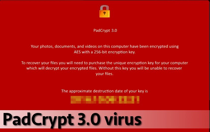 PadCrypt 3.0 virus version snapshot