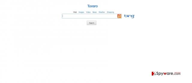 SearchNet snapshot