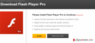 Getting rid of Flash Player Pro virus