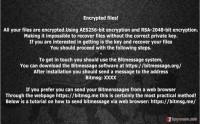Getting rid of HakunaMatata ransomware virus