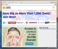 What is Savers Junction ads
