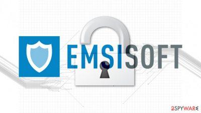 Emsisoft created a new STOP/Djvu decryptor