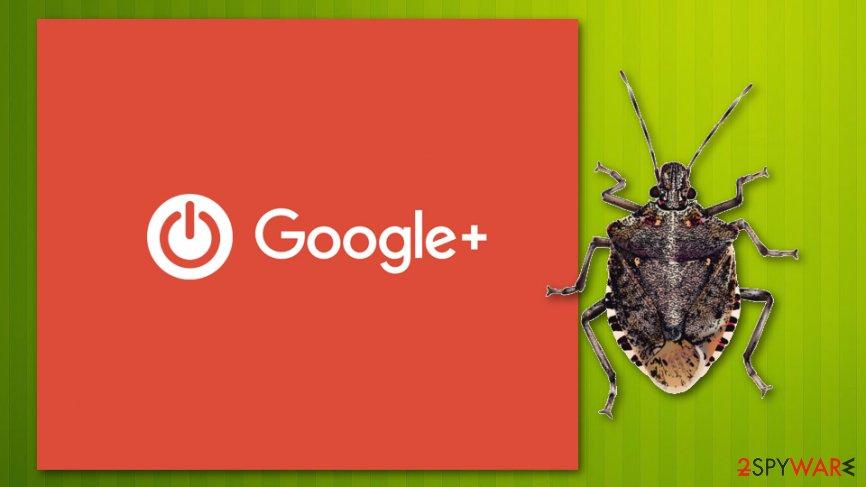 API bug affected Google+ accounts