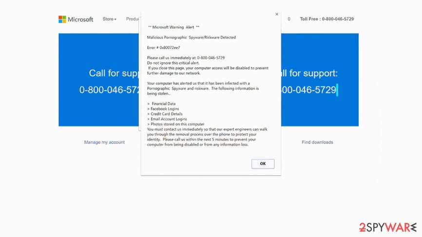 "Screenshot of  ""Microsoft Warning Alert"" Tech support scam virus"