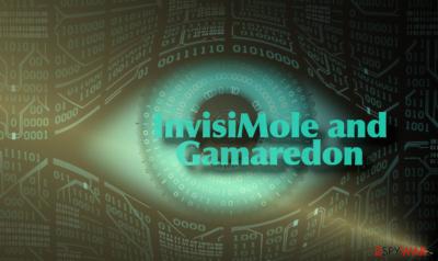 InvisiMole backdoor