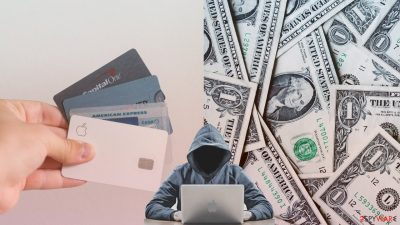Stolen credit cards on the deep web