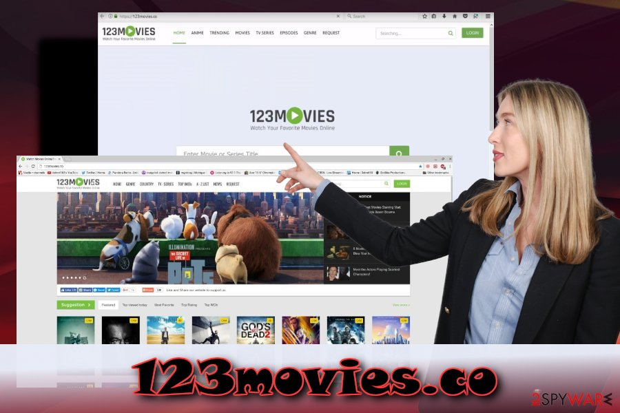 123movies.co potentially unwanted application