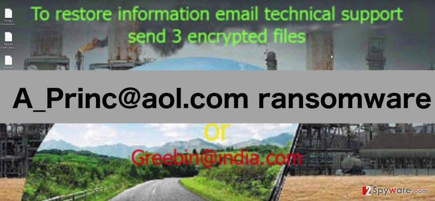 A_Princ@aol.com ransomware image