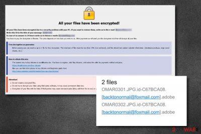 .adobe files virus