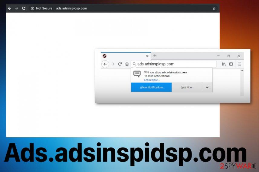 Ads.adsinspidsp.com