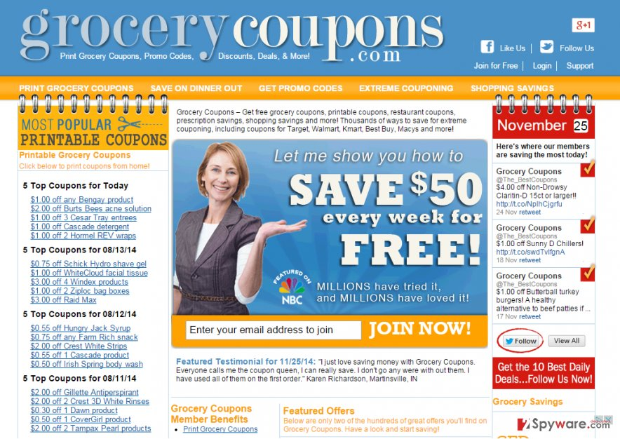 Ads by Grocery Coupons snapshot