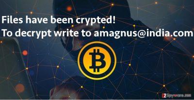 Screenshot of Amagnus@india.com virus