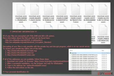 The image of Asasin ransomware virus