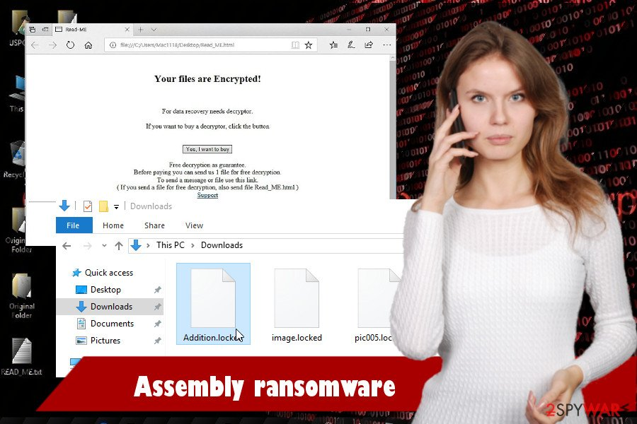 Assembly ransomware virus printscreen
