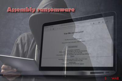 Assembly ransomware attacks English-speaking users