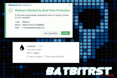 BatBitRst virus