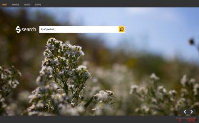 Bing Search hijacker website