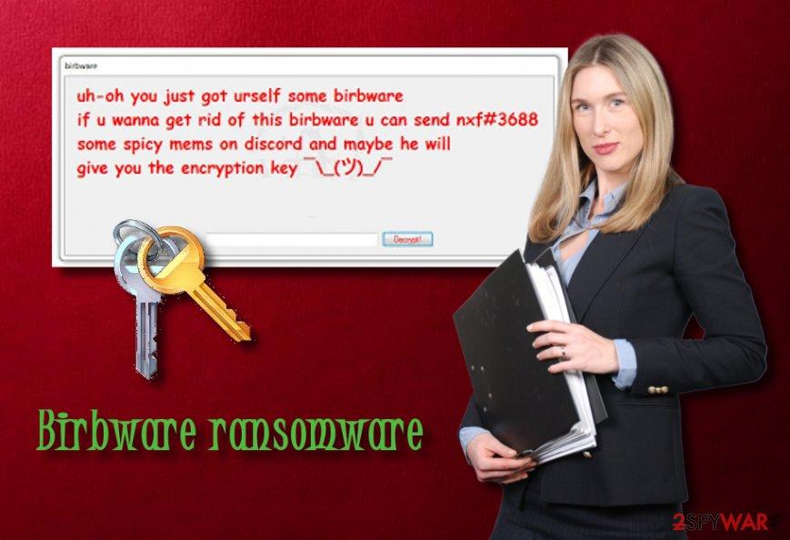 Birbware ransomware