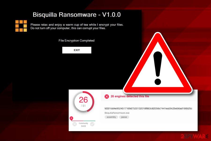 Bisquilla ransomware virus