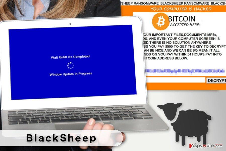 The illustration of BlackSheep ransomware virus