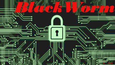 Blackworm virus