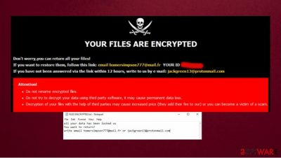 Blm ransomware
