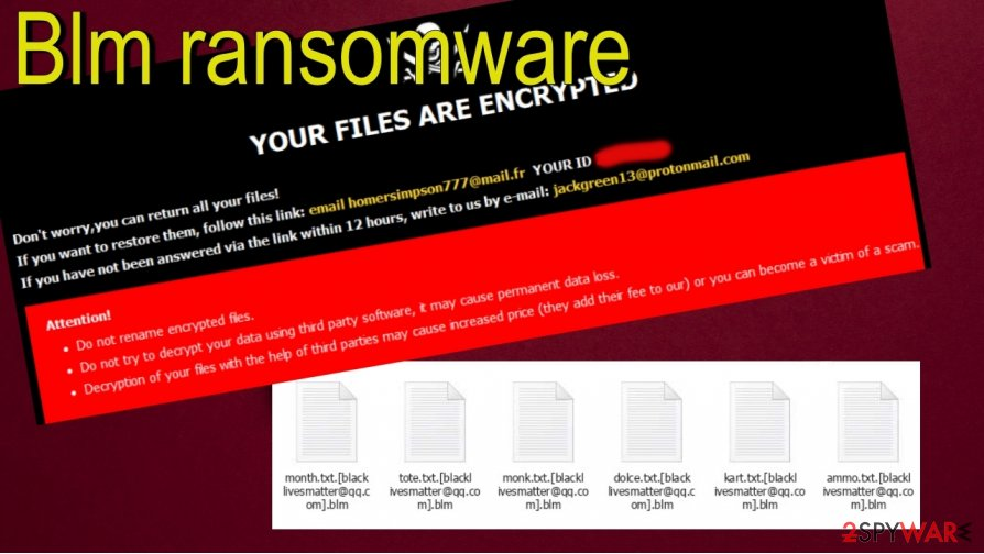 Blm ransomware virus