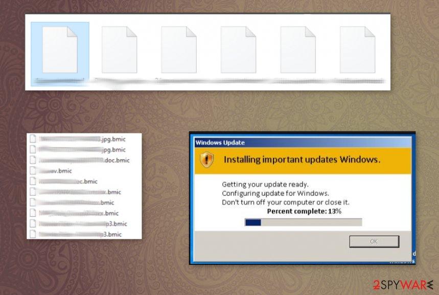 Bmic files virus