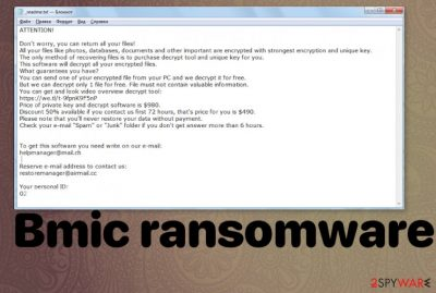 Bmic ransomware