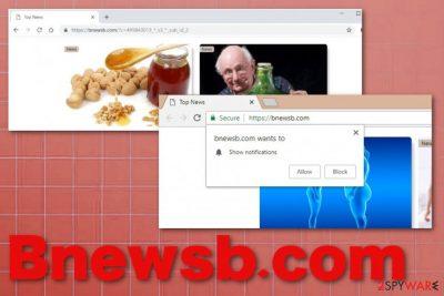 Bnewsb.com