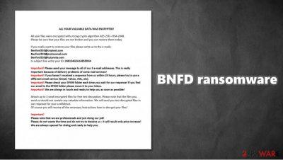 BNFD ransomware