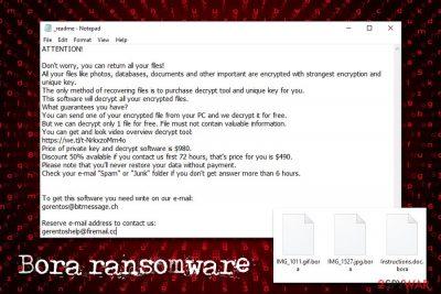 Bora ransomware