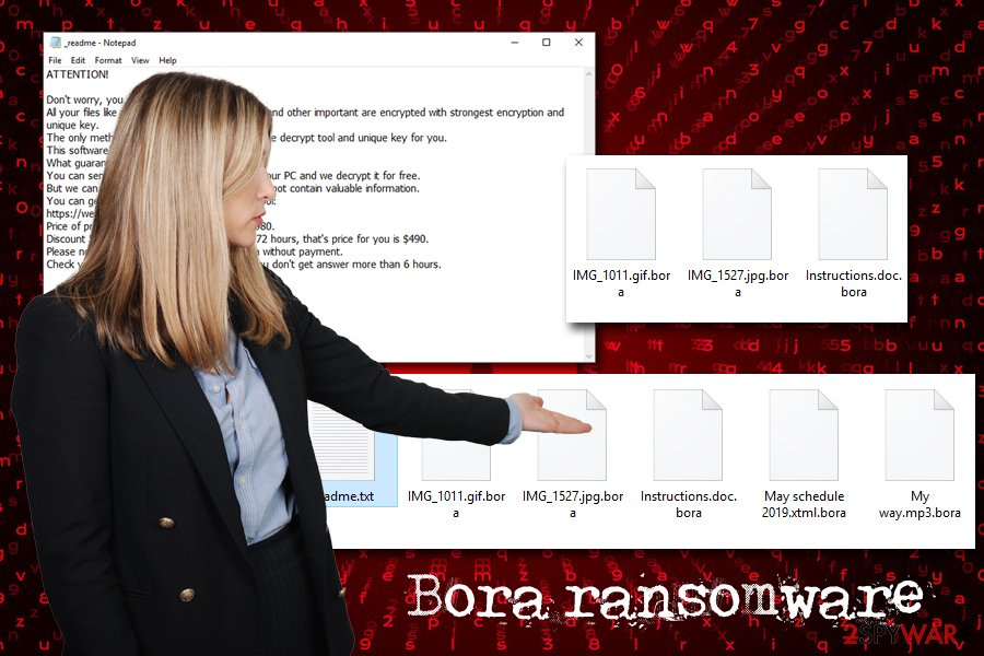 Bora ransomware virus