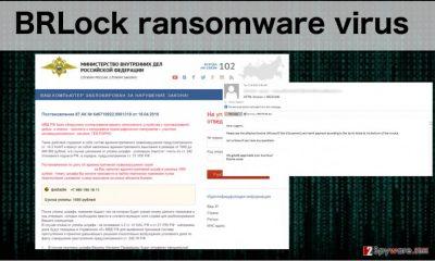 An image of the BRLock ransomware virus