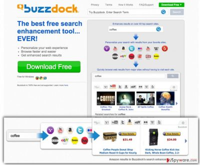 The picture showing Buzzdock virus