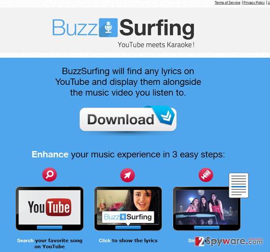 BuzzSurfing ads snapshot