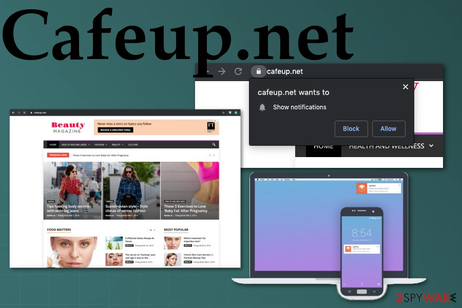Cafeup.net