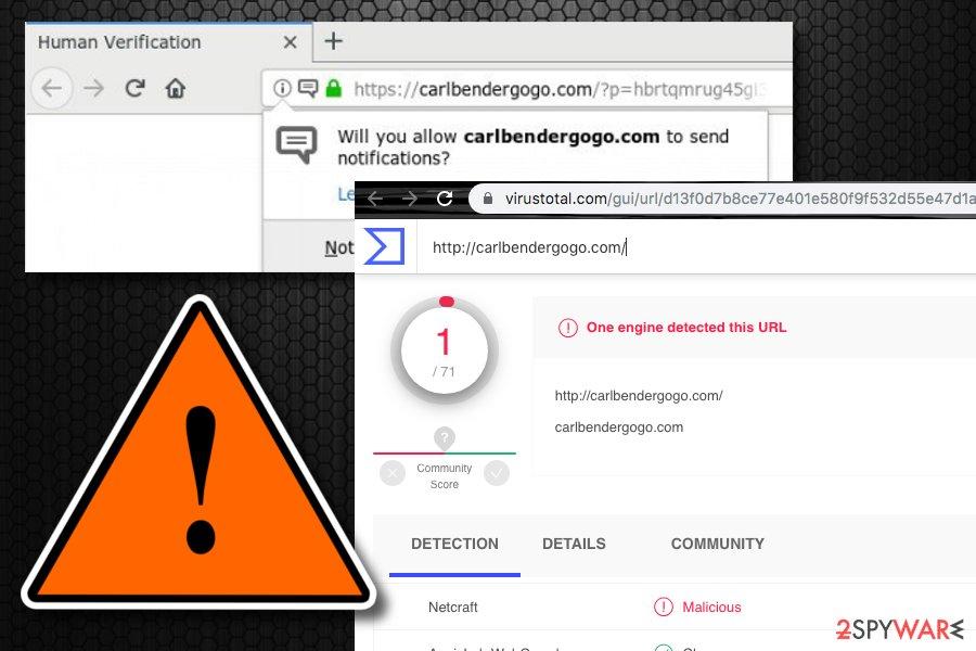 Carlbendergogo.com virus