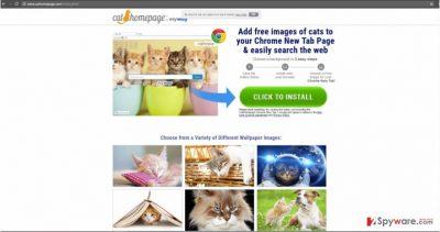 CatHomepage hijacker attracts users