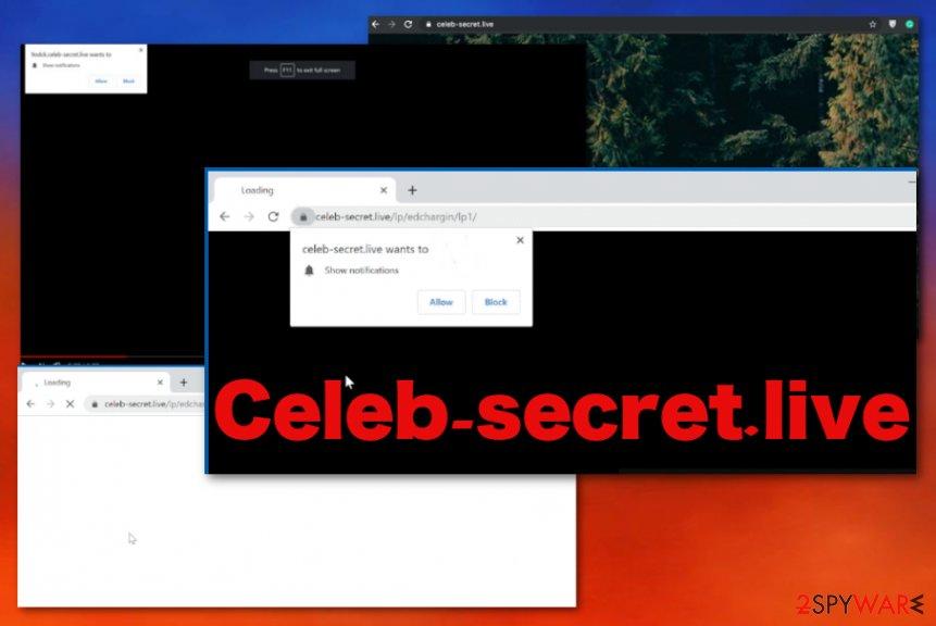 Celeb-secret.live