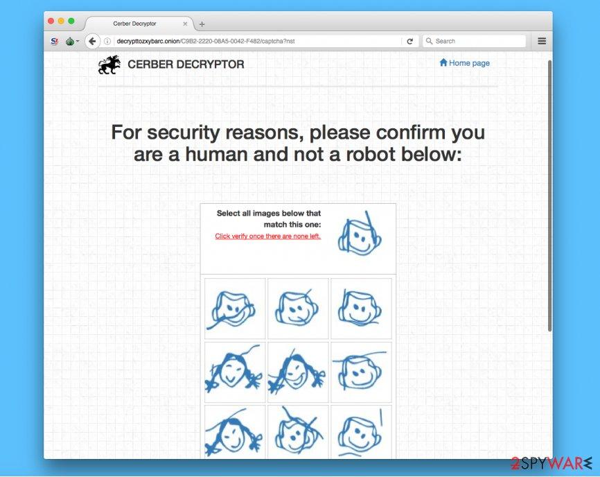 Verification page of Cerber