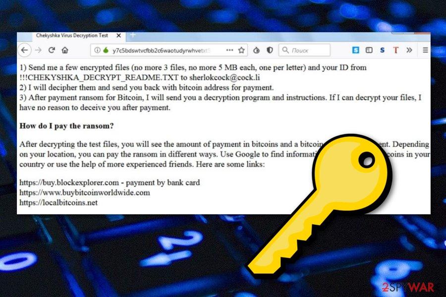 Chekyshka ransomware
