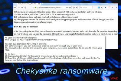 Chekyshka malware