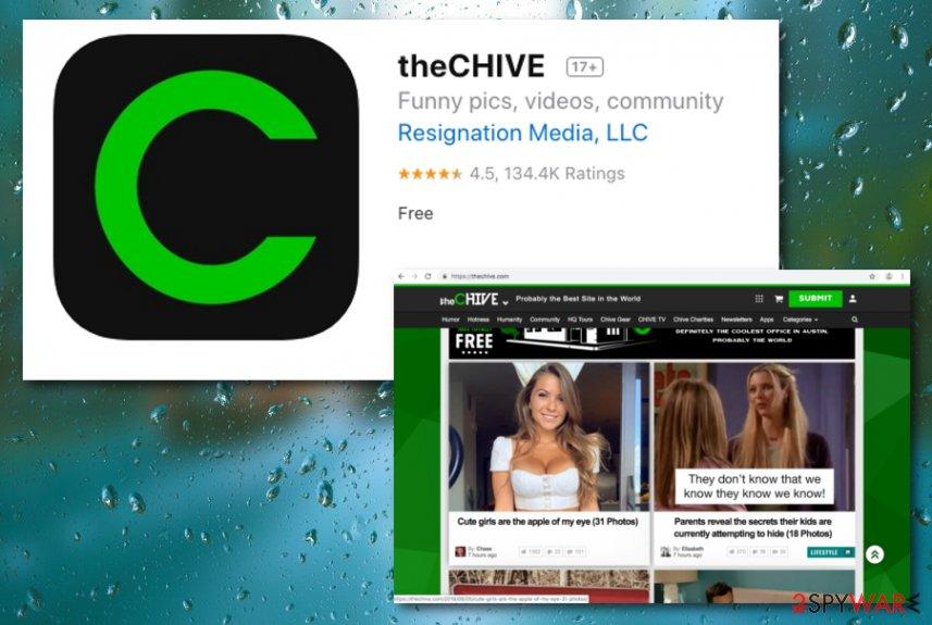 Chive App virus