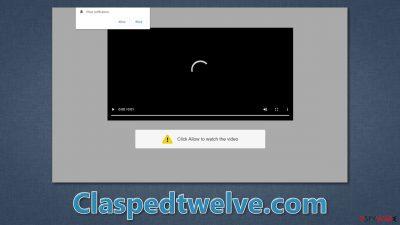 Claspedtwelve.com