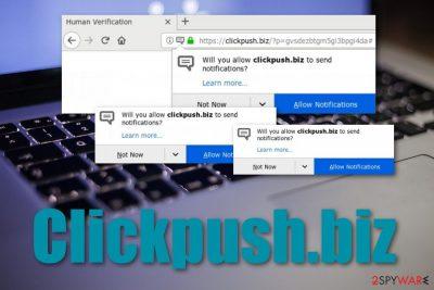 Clickpush.biz adware