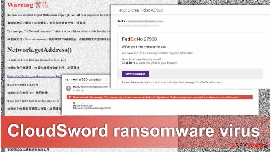 The image of CloudSword virus