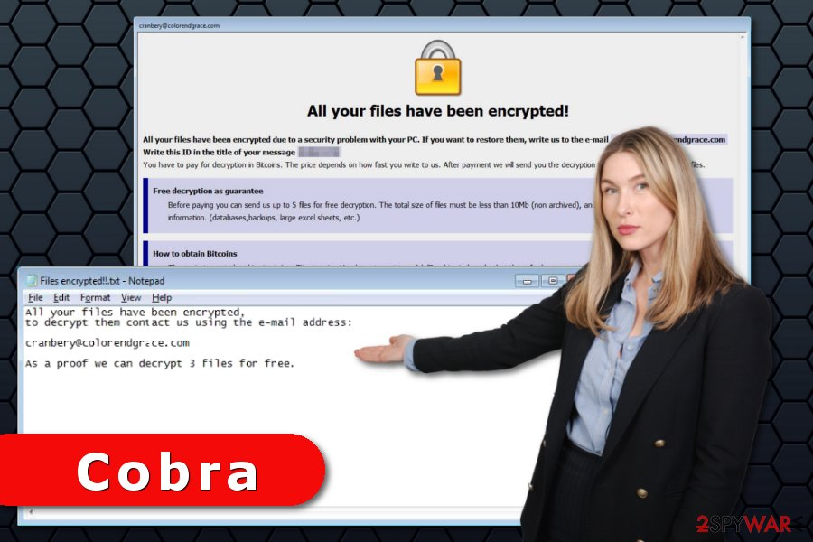 Cobra ransomware virus attack