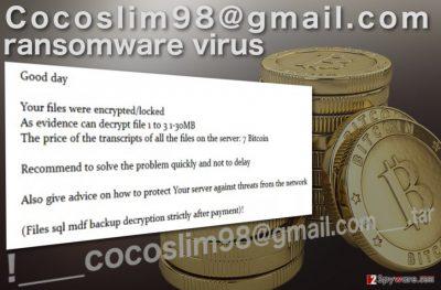 Cocoslim98@gmail.com ransomware virus picture