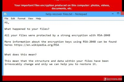 The image showing .code virus